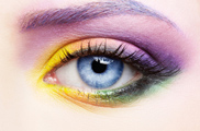 Woman Eye Zone Make Up