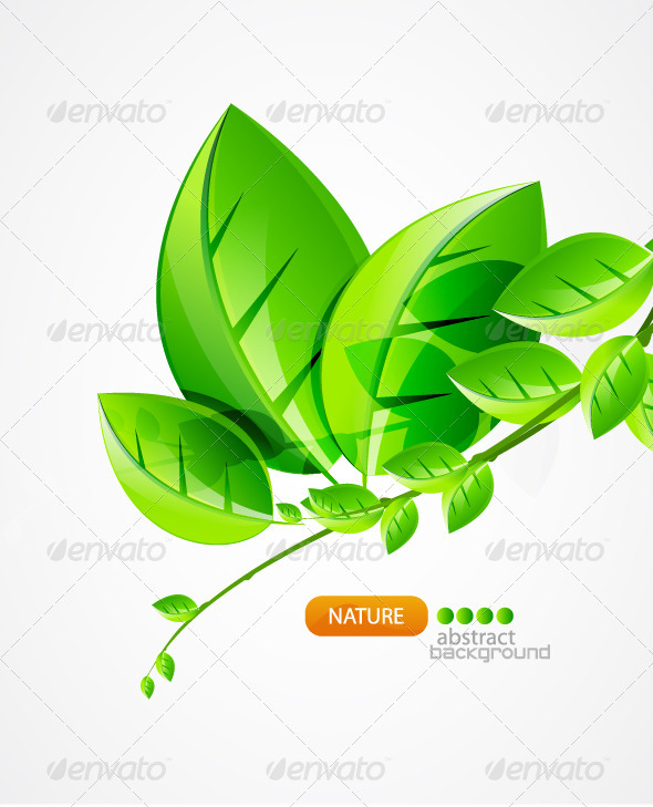 Graphic River Nature green concept background Vectors -  Conceptual  Nature  Seasons 930187