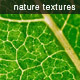 Nature texture pack - GraphicRiver Item for Sale