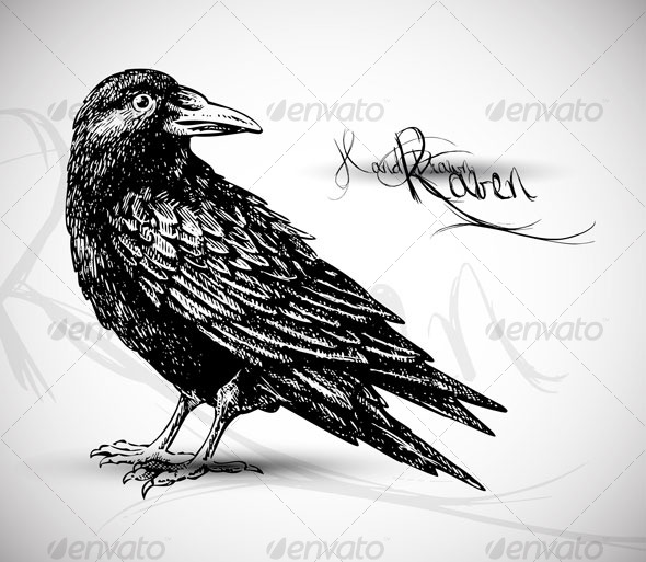 GraphicRiver Raven drawing vector 124664