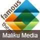 Maliku Media - ThemeForest Item for Sale