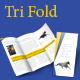 Tri-fold Brochure [Print ready] - GraphicRiver Item for Sale