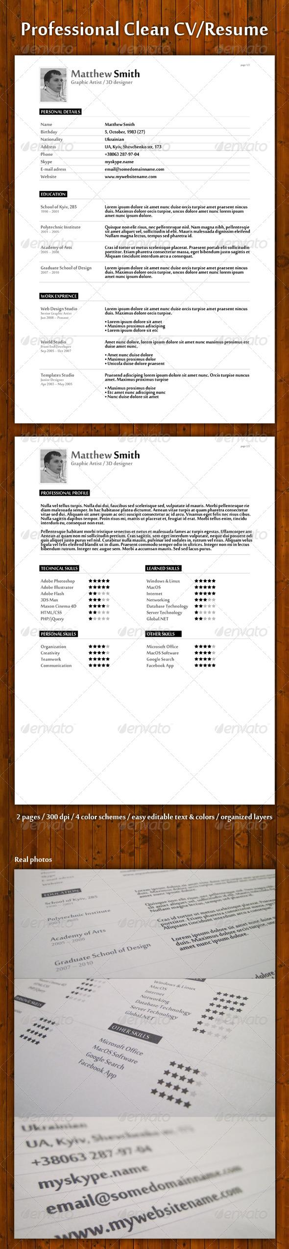 GraphicRiver Professional Clean Resume CV 133999