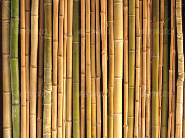 GraphicRiver Reeds 44741