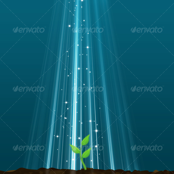 GraphicRiver New Life From A Magic Light 38073