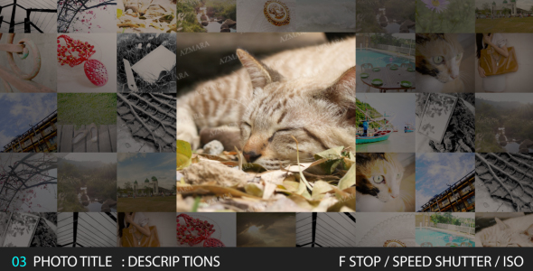 After Effects Project - VideoHive Square Photo SlideShow 143900