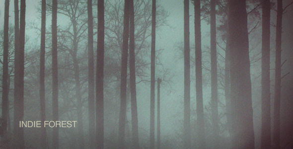 After Effects Project - VideoHive Indie Forest 143980