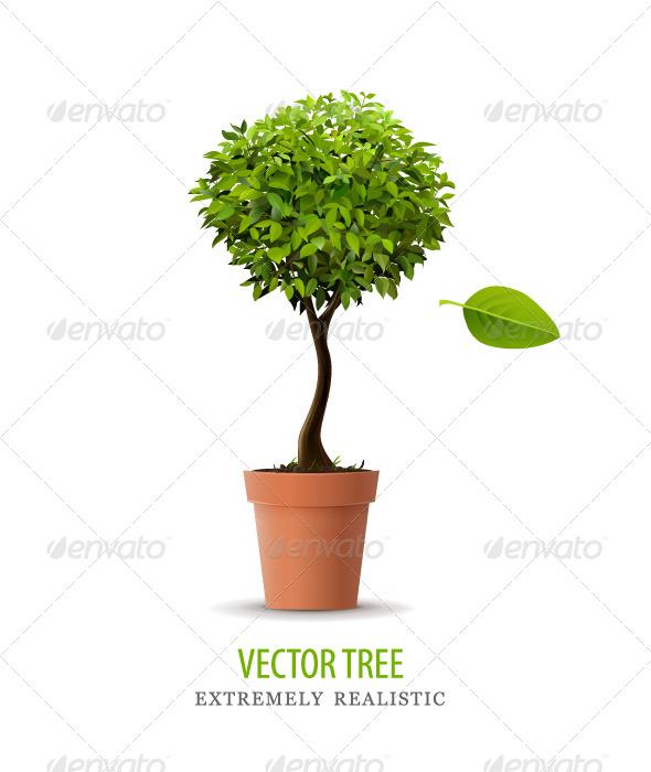 GraphicRiver Realistic vector tree 152201