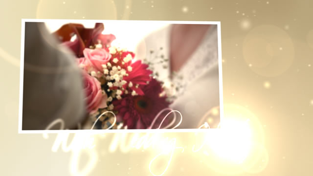 After Effects Project - VideoHive Wedding Hearts CS4 153475