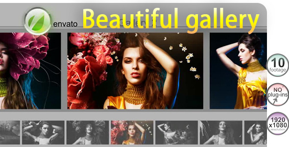 After Effects Project - VideoHive Beautiful gallery 534262
