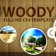 Woody After Effect CS4 Project - VideoHive Item for Sale