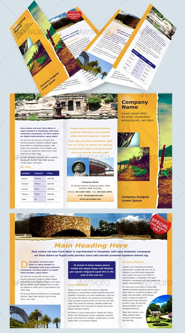GraphicRiver 6 page DL Modern Brochure 54479