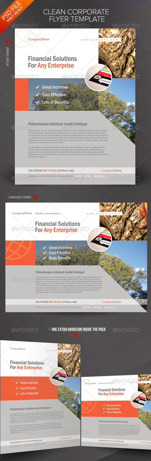 GraphicRiver Clean Corporate Flyer Template 164144