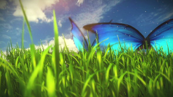 TutsPlus Whimsical Grassy Field Butterfly Scene Part 1 166066