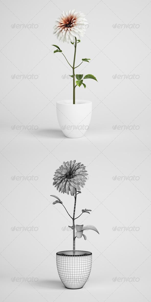 3DOcean CGAxis Flower in Vase 18 168215