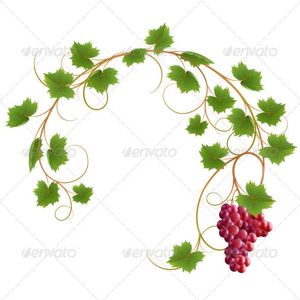 Graphic River Vine Vectors -  Conceptual  Nature  Flowers & Plants 1446081