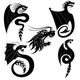 Black dragons tattoo - GraphicRiver Item for Sale