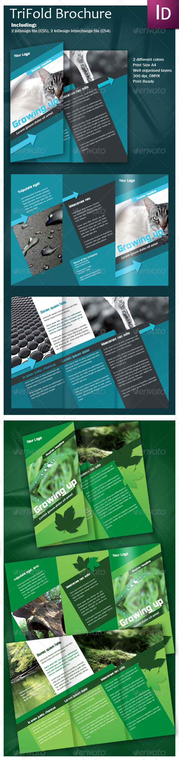 Graphic River Trifold Brochure Print Templates -  Brochures  Corporate 175050