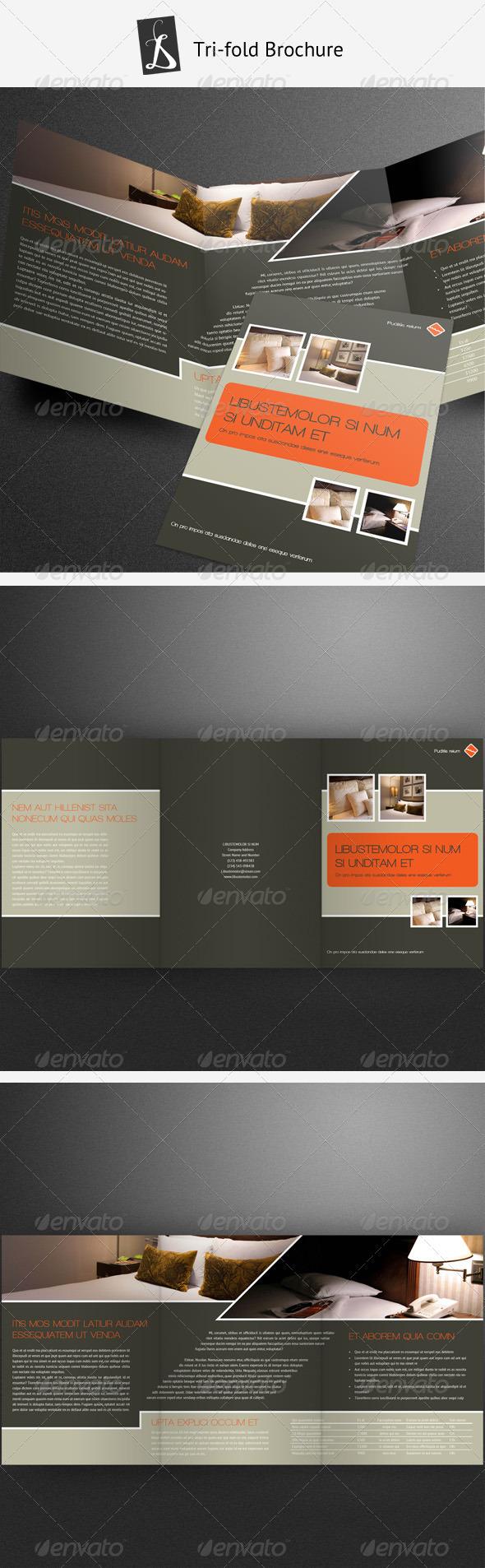 GraphicRiver Tri-fold Brochure 6 1479045