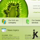Fruity Kiwi - PSD Template - ThemeForest Item for Sale