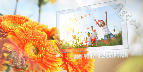 After Effects Project - VideoHive Sunny Flowers 1572942