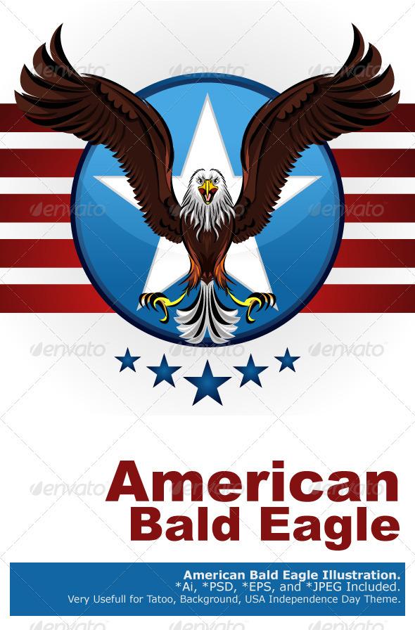 GraphicRiver American Bald Eagle 1591088