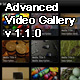 Advanced FLV Media Library Player v1.0 - ActiveDen Item for Sale