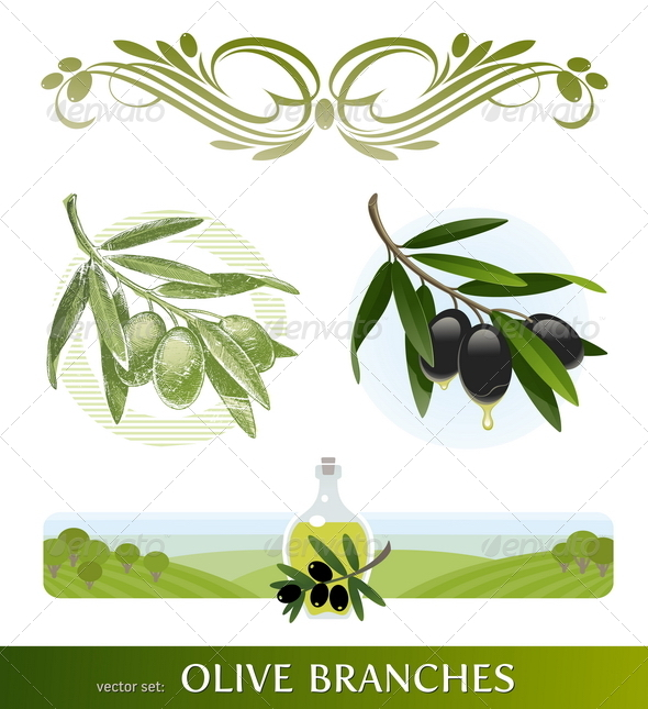 GraphicRiver Olive Branches and Oil 1633683