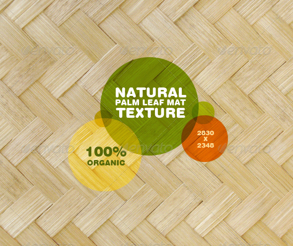 GraphicRiver Natural Palm Leaf Mat Texture 193430