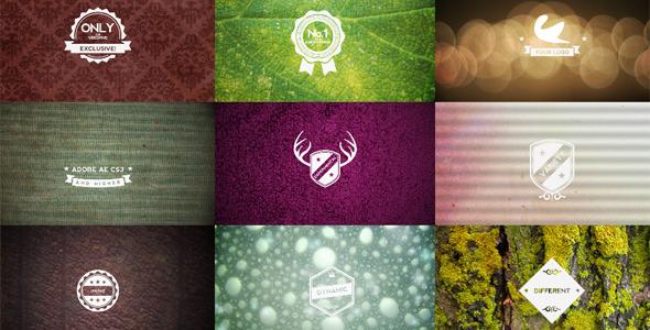 VideoHive Multi Logo Intro 1715658