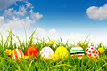 Easter Eggs with flower on Fresh Green Grass - PhotoDune Item for Sale