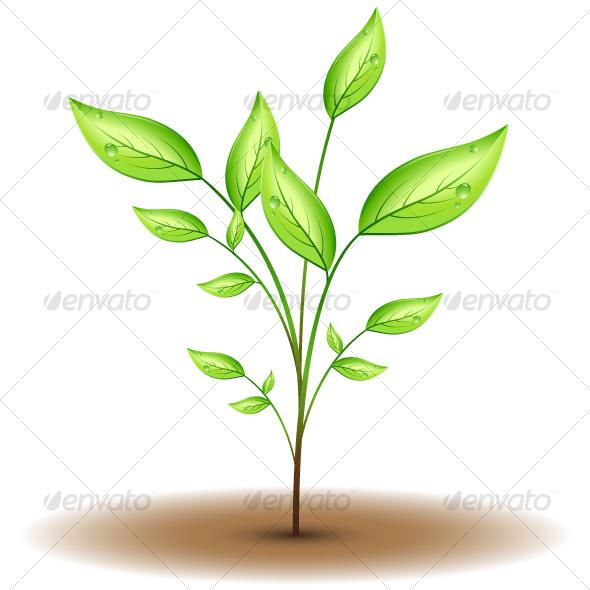 GraphicRiver Green leaf 69569