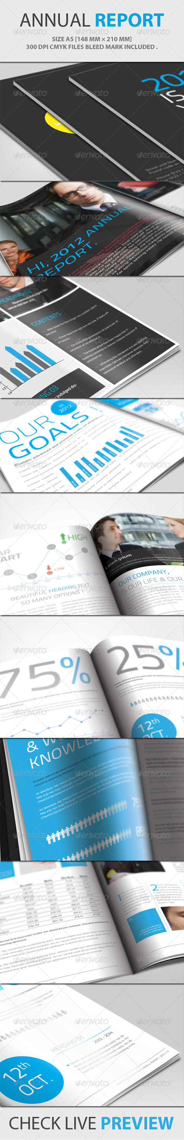 GraphicRiver Annual Report Brochure 1548888
