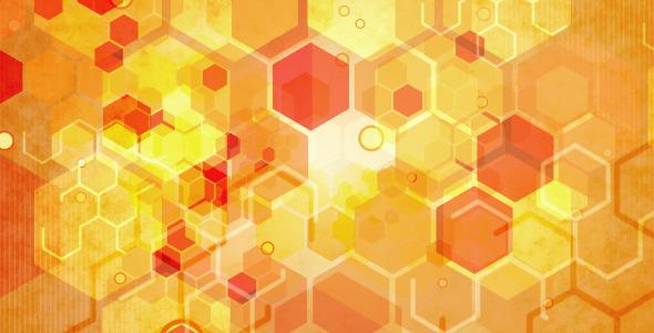 VideoHive Bee Hive 1871607