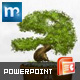 Bonsai Powerpoint Template - GraphicRiver Item for Sale