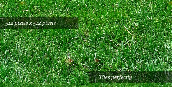 3DOcean Grass Texture II 74025