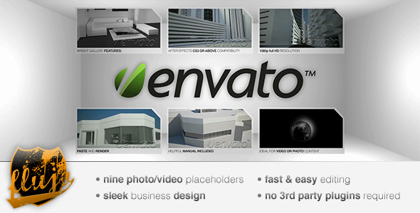 After Effects Project - VideoHive BrightGallery 119842