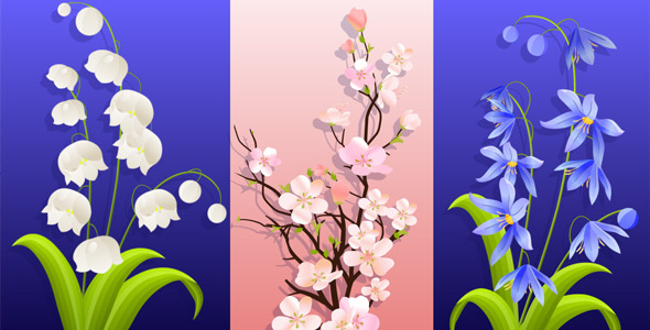 VideoHive Thre Beautiful Spring Flowers Animation With Alpha 1985368