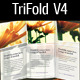 Tri Fold Brochure V4 - GraphicRiver Item for Sale