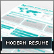 Modern Infographic Resume - GraphicRiver Item for Sale