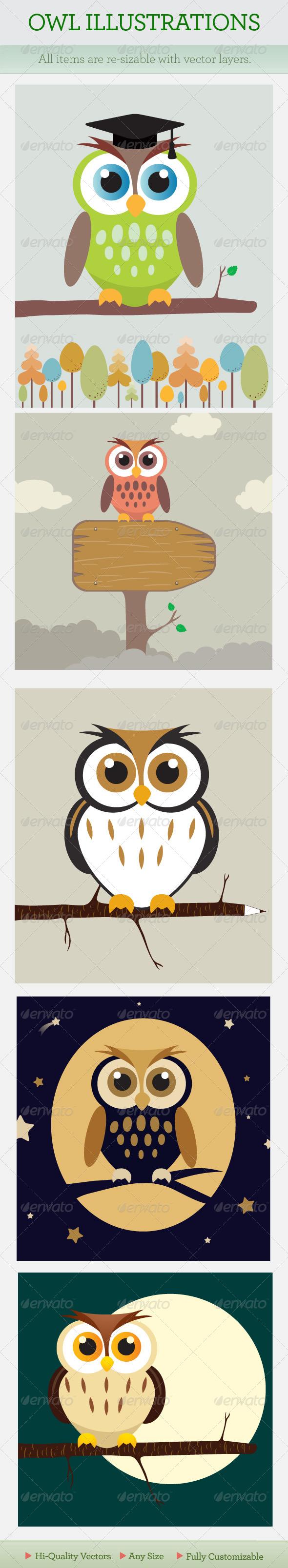 GraphicRiver Cartoon Owl 99042