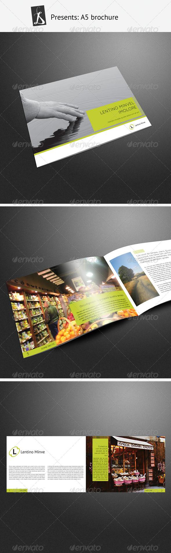 GraphicRiver A5 brochure 244185