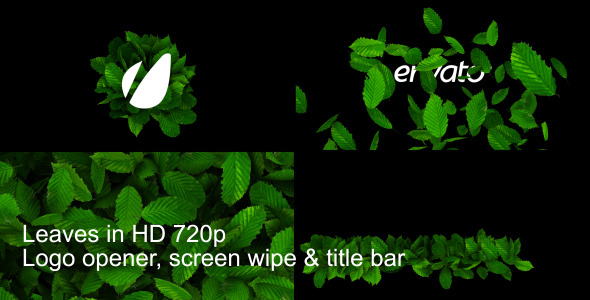 VideoHive Leaves Logo Wipe And Titlebar HD 2160535