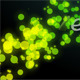 Colorful Particles - VideoHive Item for Sale