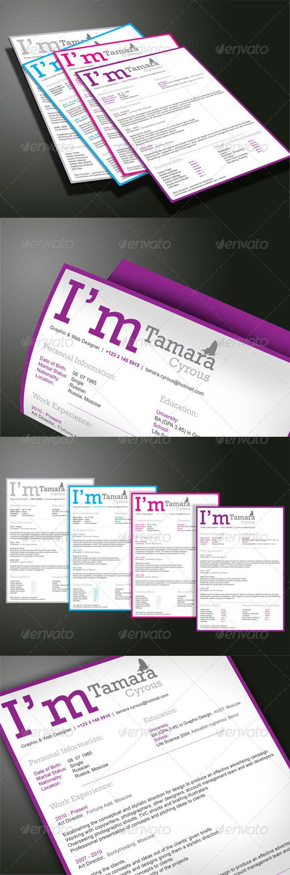 GraphicRiver Professional Resume 2255078