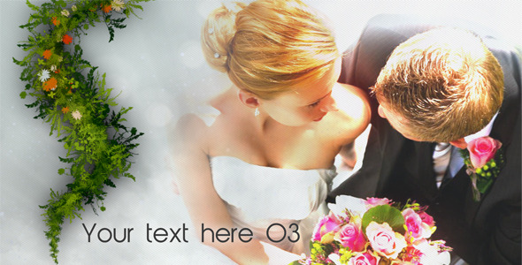 After Effects Project - VideoHive New Life Wedding Album 2 2280475