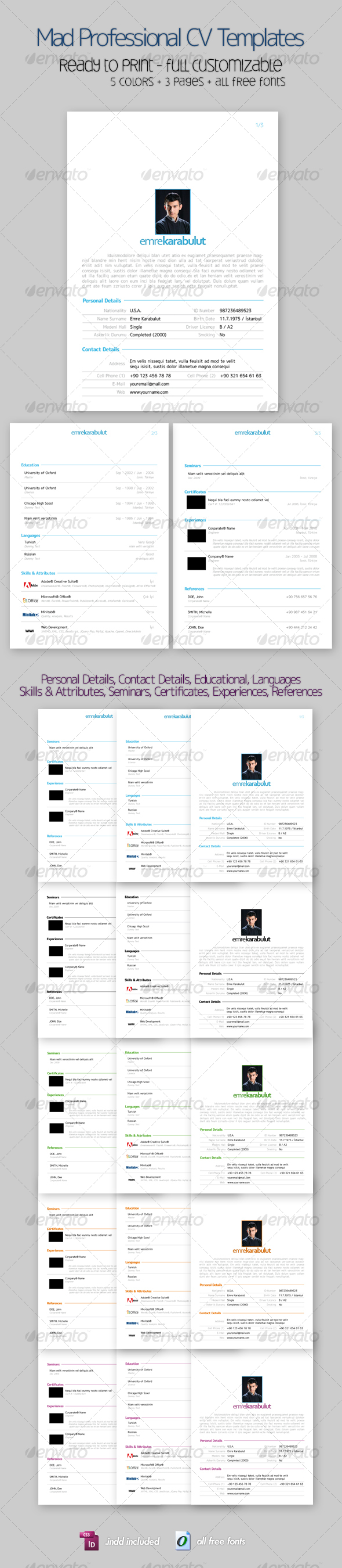 GraphicRiver Mad Professional Cv Template with 5 Color 3 Pages 85066