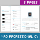 Mad Professional Cv Template with 5 Color, 3 Pages - GraphicRiver Item for Sale