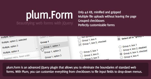 CodeCanyon plum.Form -Rip