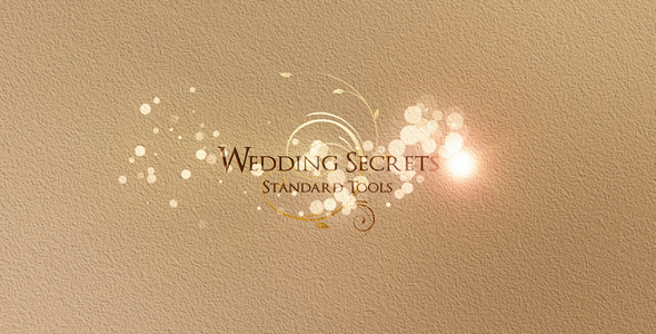 After Effects Project - VideoHive Wedding Secrets 2324864
